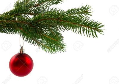 branches-sapin-avec-des-sur-fond-blanc-branche-decoration-noel-deco-de